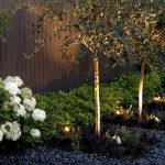 Landscape Lighting 8