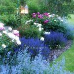 Garden Design Ideas